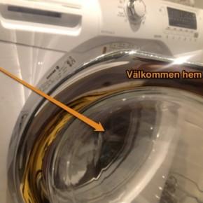 Tvättråd: Vilket väljer du?